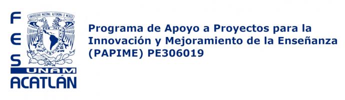Programa de Apoyo a Proyectos para la Innovación y Mejoramiento de la Enseñanza (PAPIME) PE306019